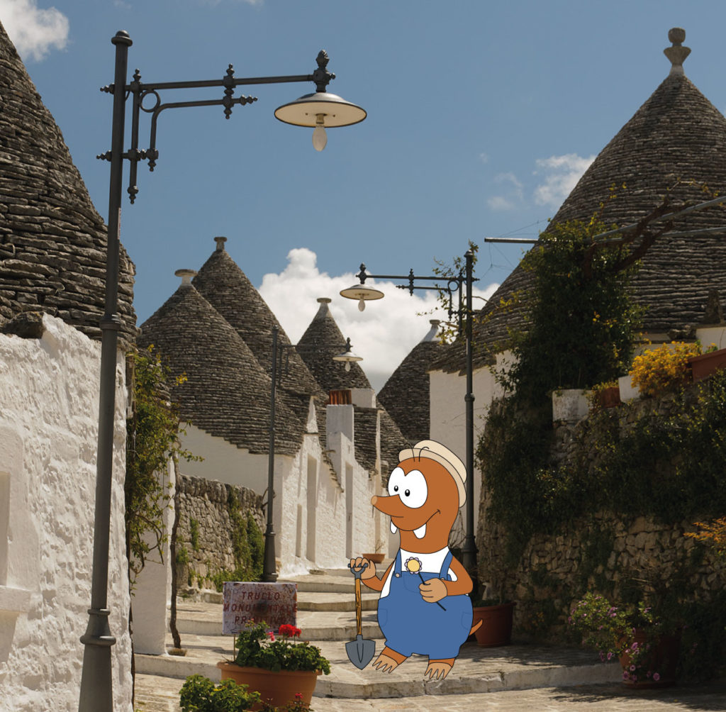 sothern italy tours: the trulli of alberobello with Tapsy Tours