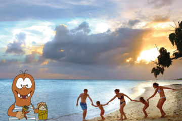 family travel bloggers to follow in 2019 on Tapsy Blog