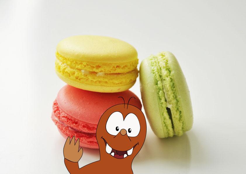 best macarons in Paris_Tapsy Blog