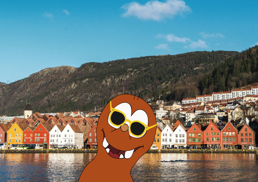 happiest country in the world_Nroway_Tapsy Tour of Bergen