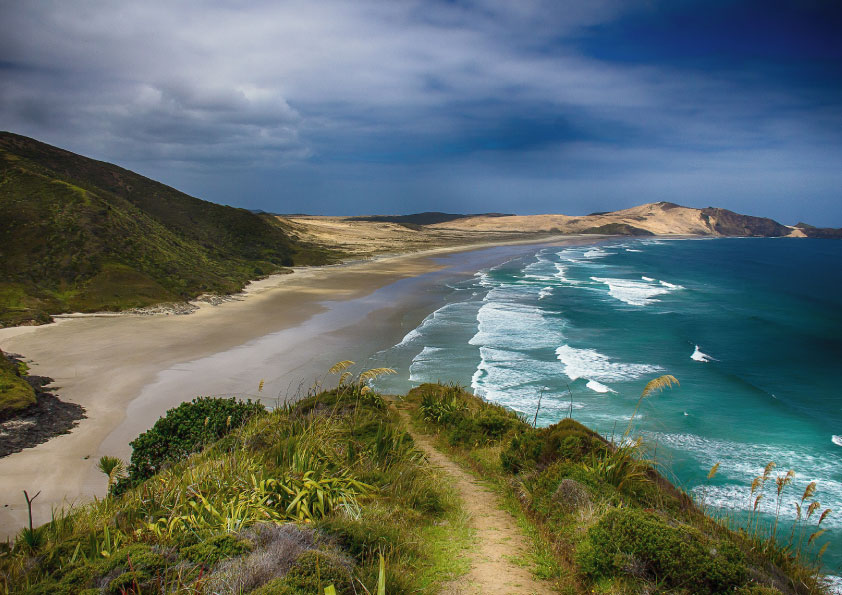 happiest country in the world_New Zealand_Tapsy Blog