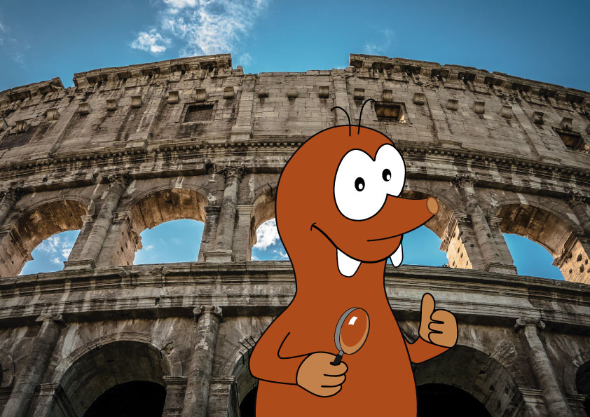 interesting facts about the Colosseum for kids_Tapsy Blog