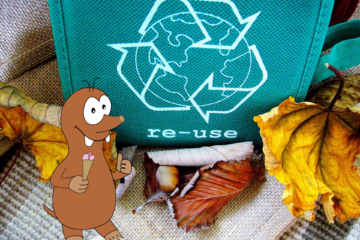 plastic pollution facts for kids_Tapsy Blog
