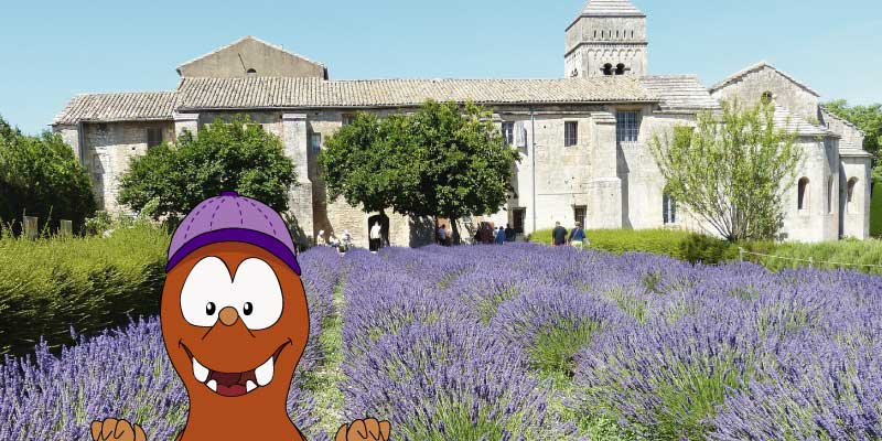 day trips from Marseille with kids-St Remy-Tapsy Blog